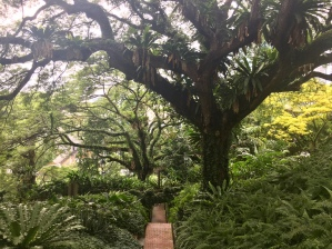fort-canning